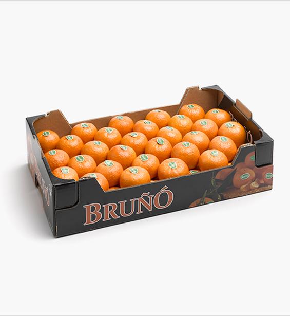 https://www.frutasbruno.com/wp-content/uploads/2021/06/c-arrufatina-02.png
