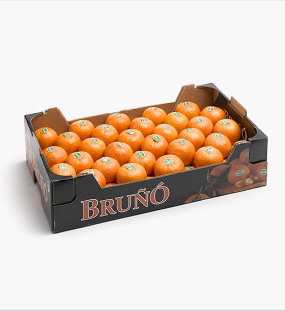 https://www.frutasbruno.com/wp-content/uploads/2021/06/c-nadorcott-02.png
