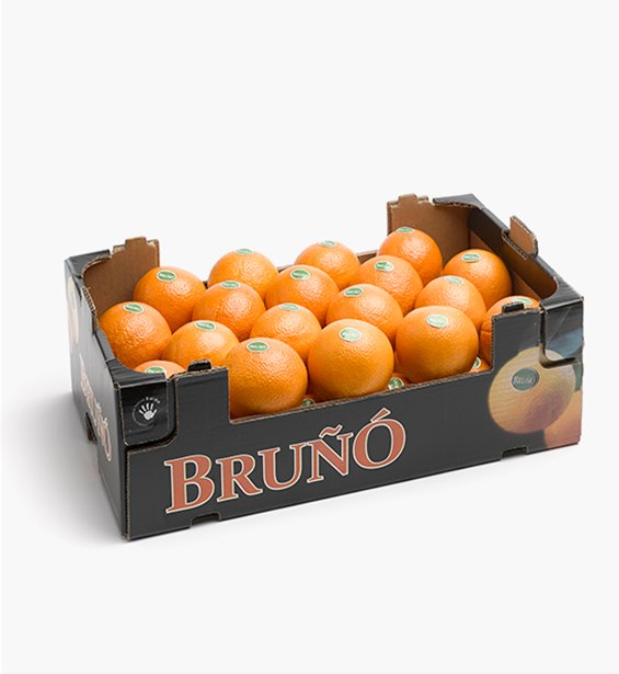 https://www.frutasbruno.com/wp-content/uploads/2021/06/n-powelsummernavel-02.png